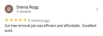 Google Review from Drema Rogg