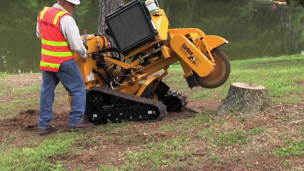 Stump grinding in Jacksonville, FL